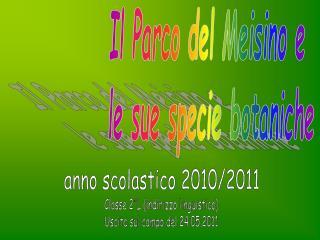 Classe 2°L (indirizzo linguistico) Uscita sul campo del 24.05.2011