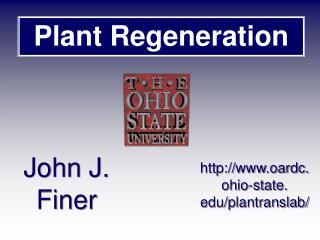 Plant Regeneration