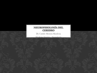 Neurofisiología del cerebro
