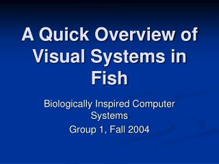 A Quick Overview of Visual Systems in Fish