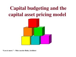 Capital budgeting and the capital asset pricing model