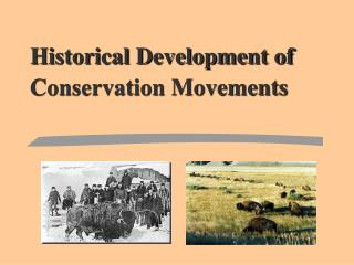 Historical Development of Conservation Movements