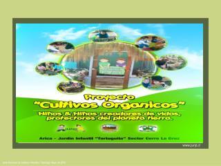 Junta Nacional de Jardines Infantiles / Santiago, Mayo de 2008