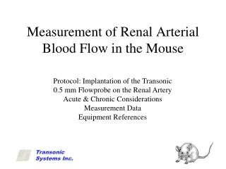 Measurement of Renal Arterial Blood Flow in the Mouse
