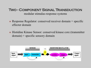 Two - Component Signal Transduction modular stimulas-response systems