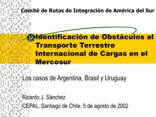 Identificación de Obstáculos al Transporte Terrestre Internacional de Cargas en el Mercosur