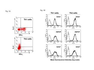 Th1 cells