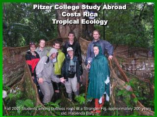 Pitzer College Study Abroad Costa Rica Tropical Ecology