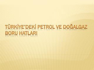 TÜRKİYE'DEKİ PETROL VE DOĞALGAZ BORU HATLARI