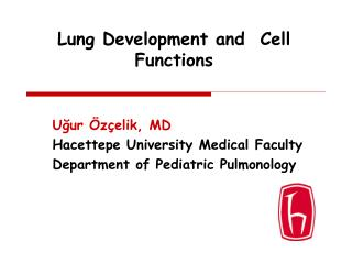Lung Development and  Cell Functions
