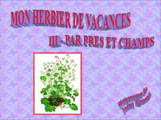 MON HERBIER DE VACANCES