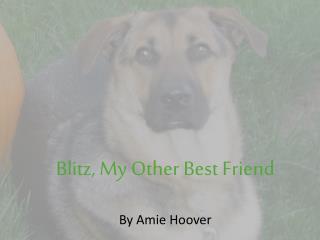 Blitz, My Other Best Friend