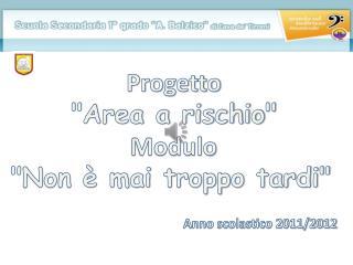 """Progetto  """" Area a rischio """" Modulo """"Non è mai troppo tardi"""" Anno scolastico 2011/2012"""