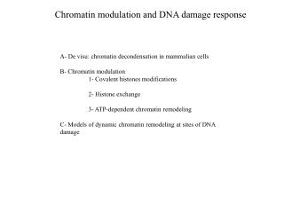 Chromatin modulation and DNA damage response