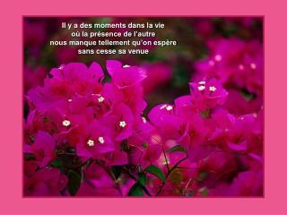 Il y a des moments dans la vie  où la présence de l'autre  nous manque tellement qu'on espère