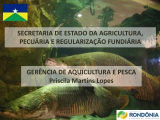 SECRETARIA DE ESTADO DA AGRICULTURA, PECUÁRIA E REGULARIZAÇÃO FUNDIÁRIA