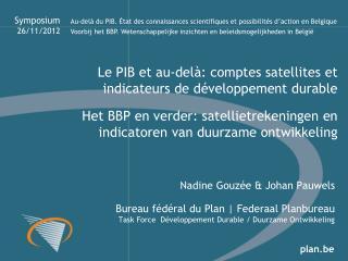 Het BBP en  verder :  satellietrekeningen  en  indicatoren  van  duurzame ontwikkeling