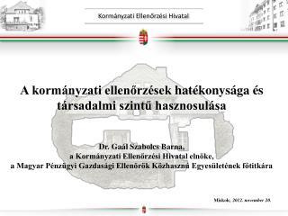 A kormányzati ellenőrzések hatékonysága és társadalmi szintű hasznosulása