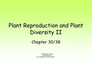 Plant Reproduction and Plant Diversity II
