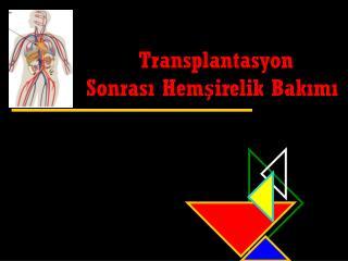 Transplantasyon Sonrası Hemşirelik Bakımı