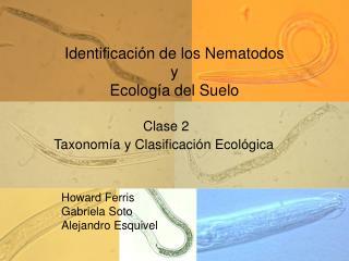 Identificación de los Nematodos y Ecología del Suelo