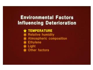 482 Environmental causes of deterioration Copy (2)