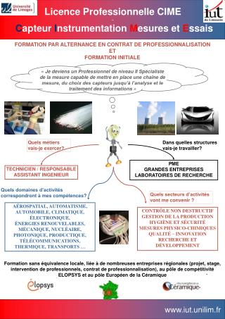 FORMATION PAR ALTERNANCE EN CONTRAT DE PROFESSIONNALISATION  ET FORMATION INITIALE