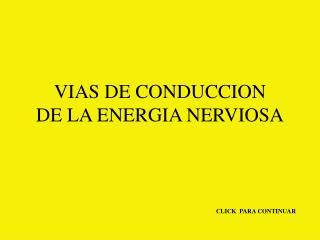 VIAS DE CONDUCCION DE LA ENERGIA NERVIOSA