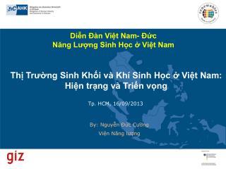 Thị Trường Sinh Khối và Khí Sinh Học ở Việt Nam: Hiện trạng và Triển vọng