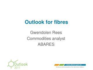 Outlook for fibres