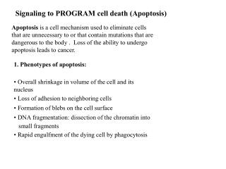 Signaling to PROGRAM cell death Apoptosis