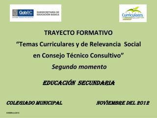 """TRAYECTO FORMATIVO """"Temas Curriculares y de Relevancia  Social en Consejo Técnico Consultivo"""""""