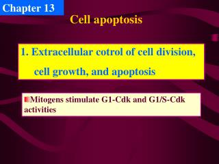 Cell apoptosis