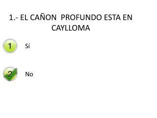 1.- EL CAÑON  PROFUNDO ESTA EN  CAYLLOMA