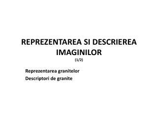 REPREZENTAREA SI DESCRIEREA IMAGINILOR (1/2)