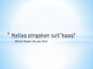 Naliaq pingakan suit'kaaq?