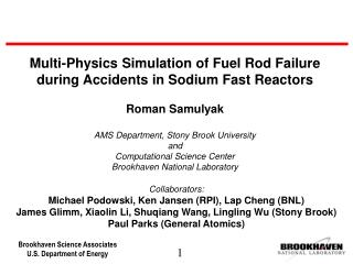 Multi-Physics Simulation of Fuel Rod Failure during Accidents in Sodium Fast Reactors