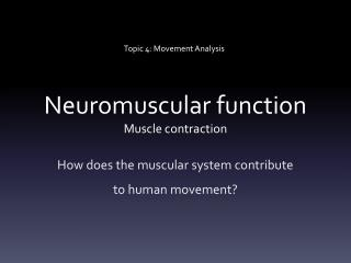 Neuromuscular function Muscle contraction