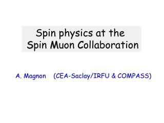 Spin physics at the S pin  M uon C ollaboration
