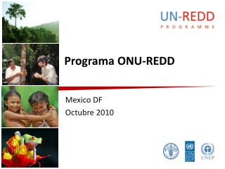 Programa ONU-REDD