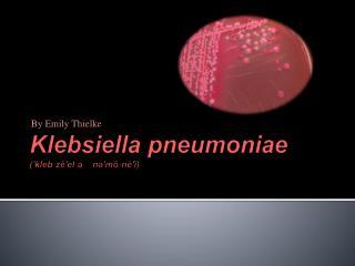 Klebsiella pneumoniae (′ kleb·zē′el·ə nə′mō·nē′ī )