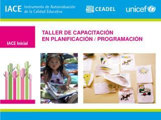 TALLER DE CAPACITACIÓN EN PLANIFICACIÓN /  PROGRAMACIÓN