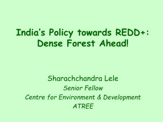 India�s Policy towards REDD+: Dense Forest Ahead!