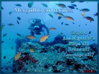 Mergulho em recifes