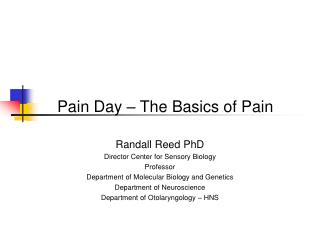 Pain Day – The Basics of Pain