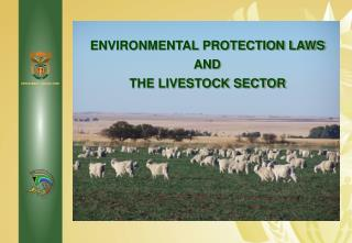 ENVIRONMENTAL PROTECTION LAWS  AND  THE LIVESTOCK SECTOR