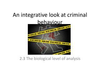 An integrative look at criminal behaviour