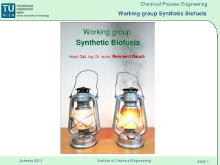 Working  group Synthetic  Biofuels