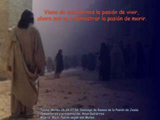 Texto: Mateo 26,14-27,66. Domingo de Ramos de la Pasión de Jesús.