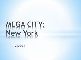 MEGA CITY: New York